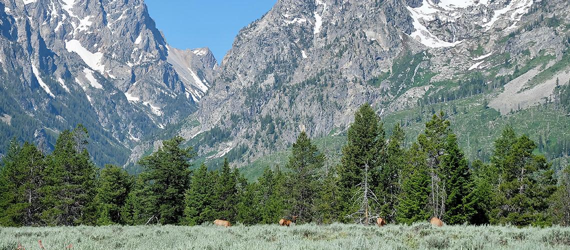Grand Teton National Park : อุทยานทางผ่านกับการกางเต็นท์ครั้งแรกในอเมริกา
