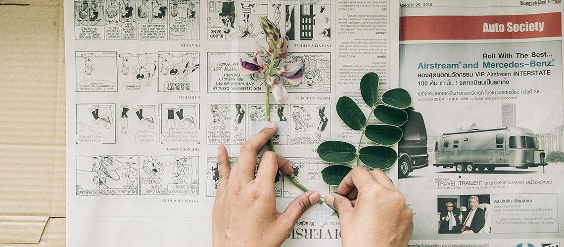 HOW TO ทับดอกไม้แบบนักพฤกษศาสตร์อย่างง่ายๆ ทำได้เองที่บ้าน