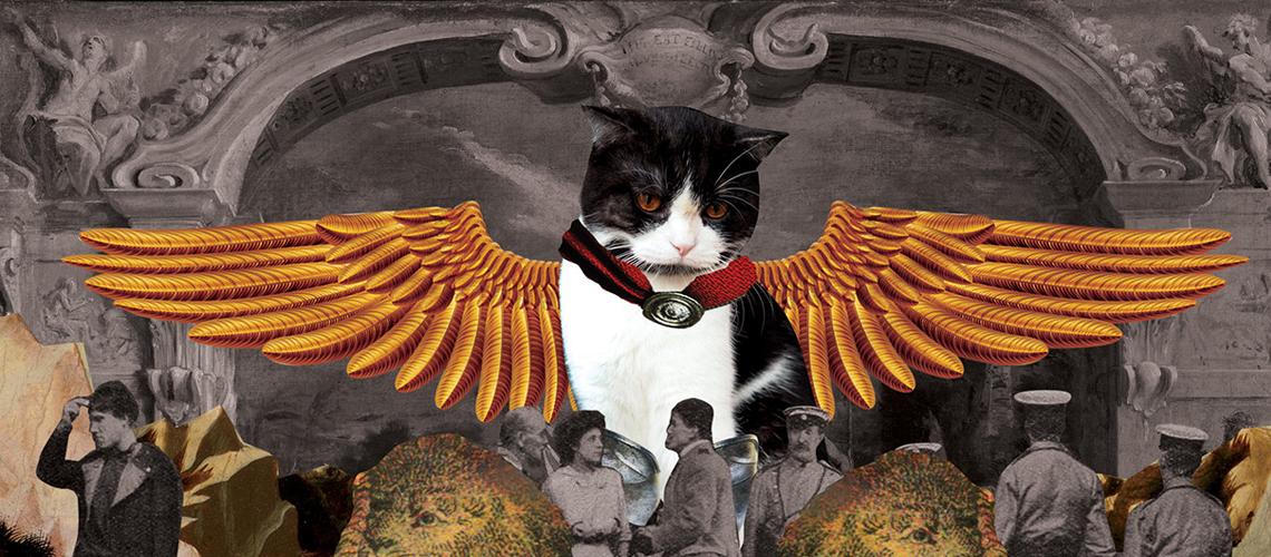 สปาร์ตั้น : แมวหน้าเข้มผู้กลายเป็นนายแบบในงานศิลปะของเจ้าของหนุ่ม