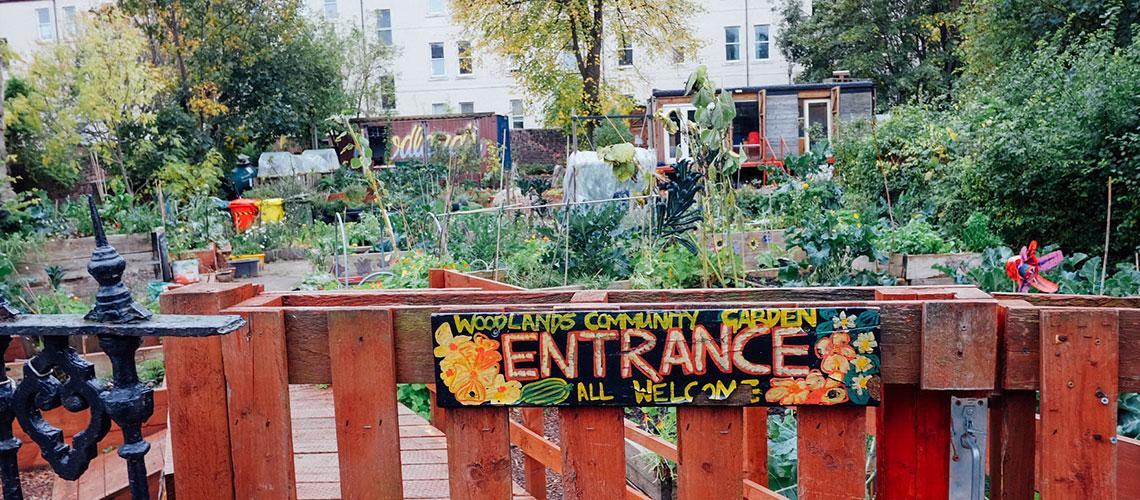 Woodlands Community Garden : สวนธรรมดาแห่งกลาสโกว์ที่ไม่ธรรมดา