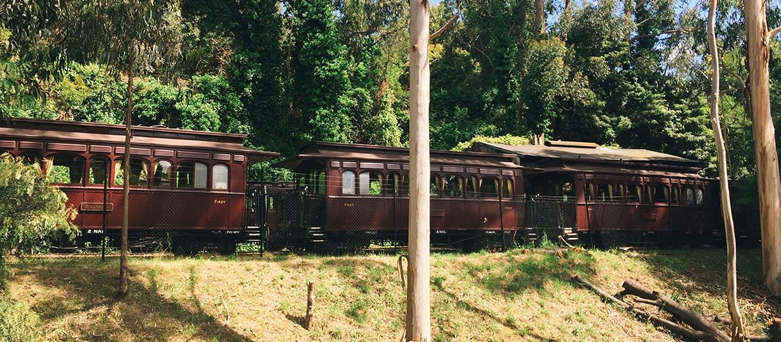 PUFFING BILLY TRAIN : ตีตั๋วกลับไปเป็นเด็กน้อยบน 'ขบวนรถไฟห้อยขา' ที่เมลเบิร์น