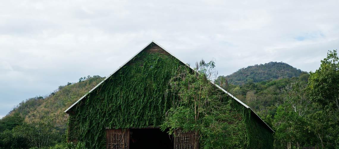 The Birder's Lodge : รังน้อยๆ ของคนรักกาแฟและสินค้าธรรมชาติ
