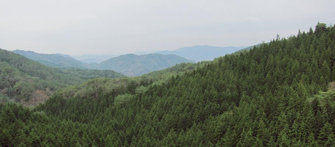Rokkosan & Arima Onsen : ตามรอยมิตรภาพสี่สาว Happy Hour บนภูเขาสูงและเมืองบ่อน้ำร้อน