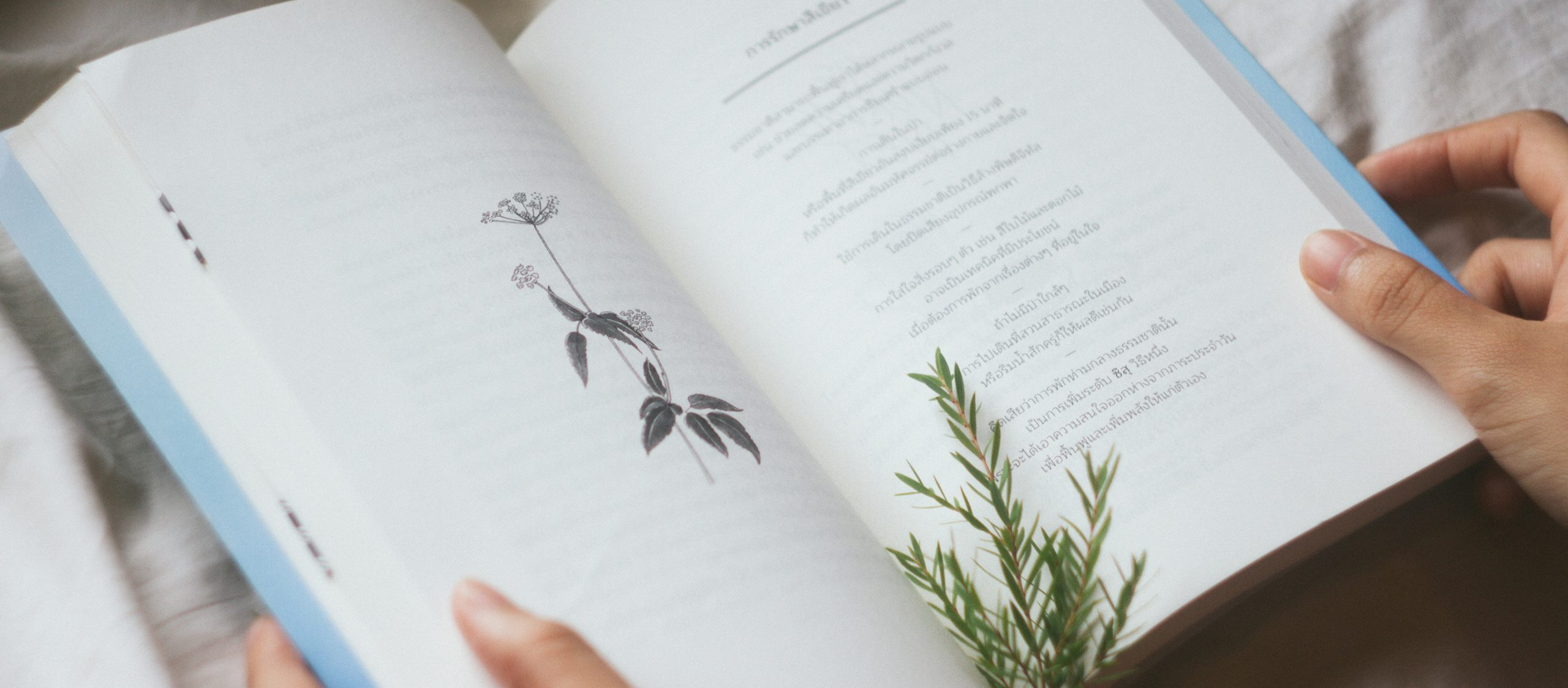 Finding Sisu : หนังสือที่บอกว่าความสุขมาจากเรื่องยากๆ ในชีวิต