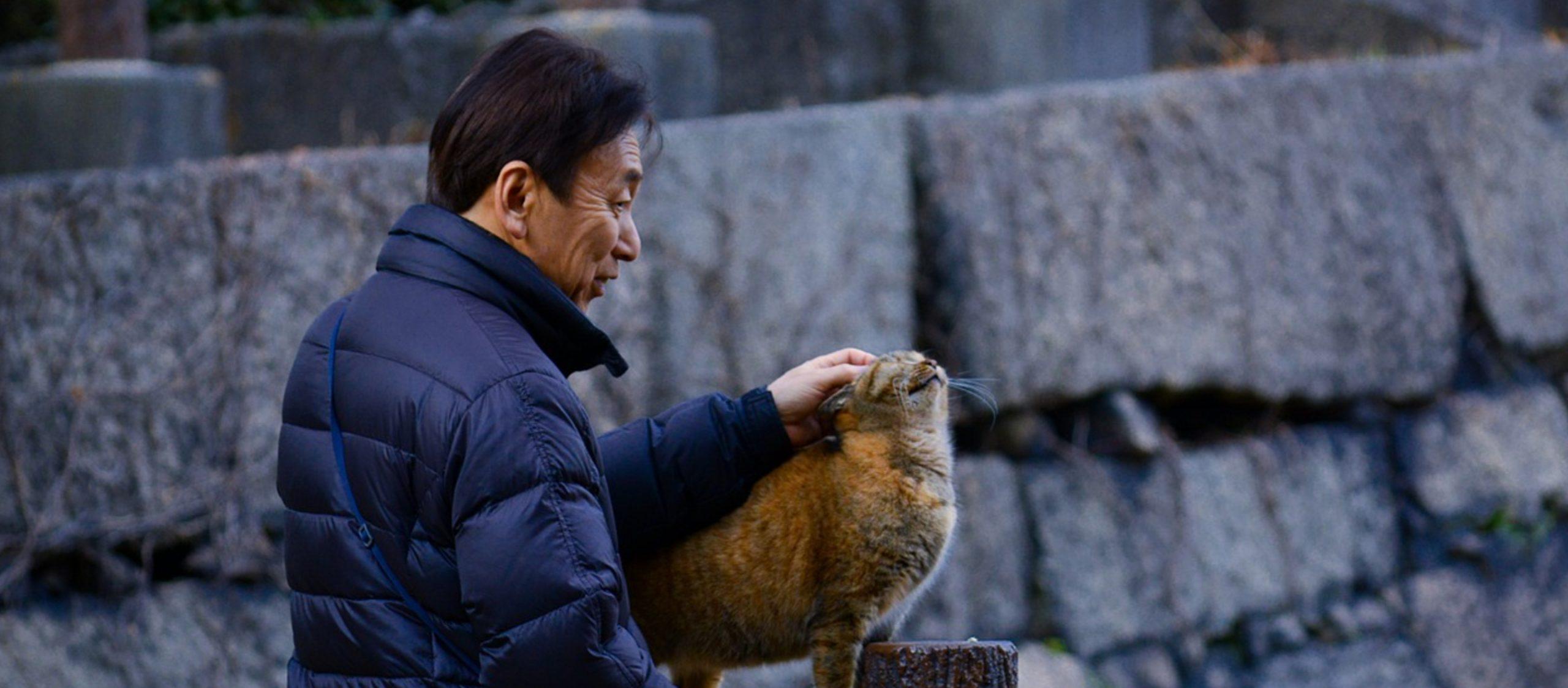 ตายแล้วแมวไปไหน? กิจการ 'บ้านพักแมวชรา' ในญี่ปุ่น