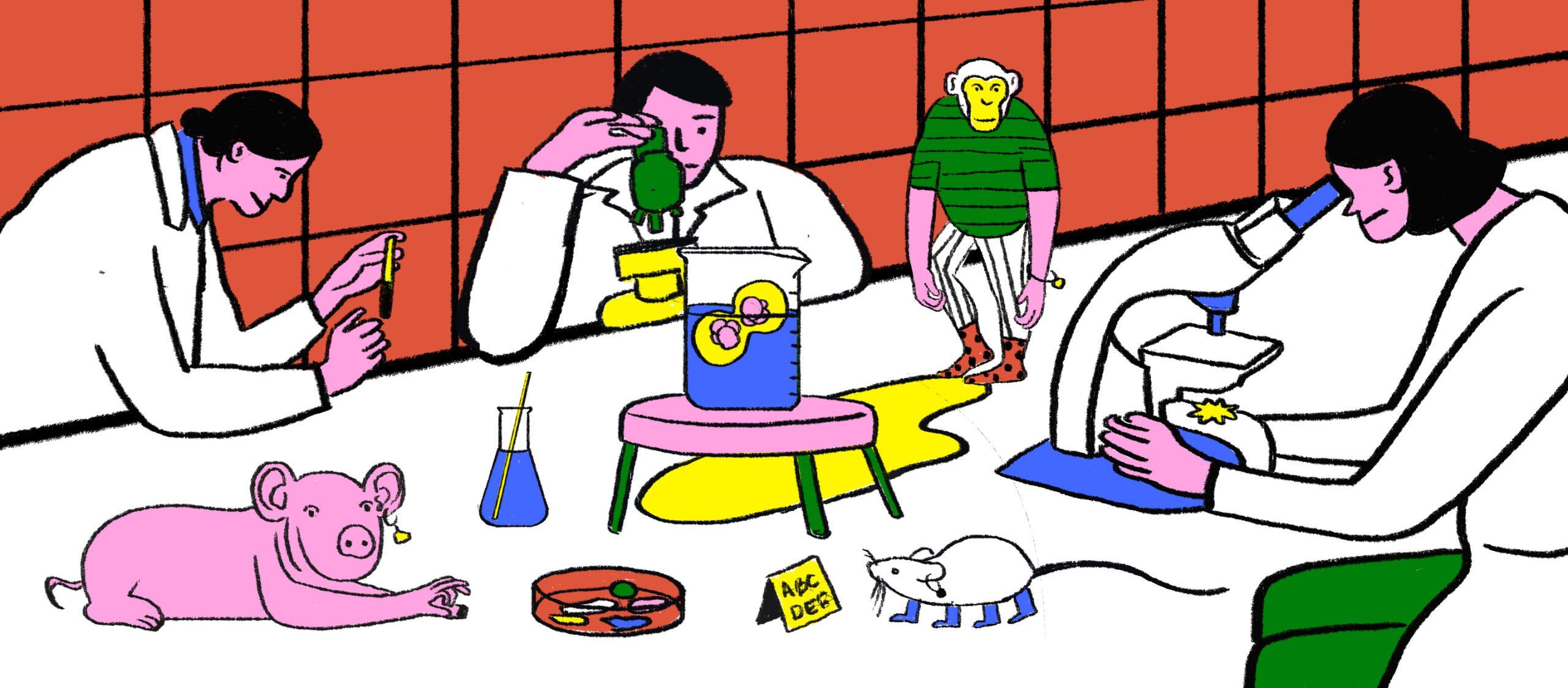อะไรคือความเป็น 'มนุษย์' หากเส้นแบ่งที่ว่านี้เลือนรางจากการทดลองข้ามสายพันธุ์