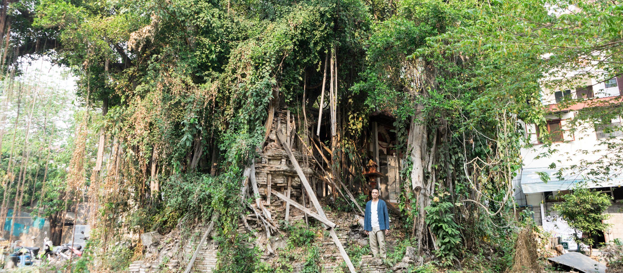 คุยกับอาจารย์ภูมิสถาปัตย์ผู้ใช้ 'ต้นไม้ศักดิ์สิทธิ์' ผลักเชียงใหม่เป็นเมืองมรดกโลก