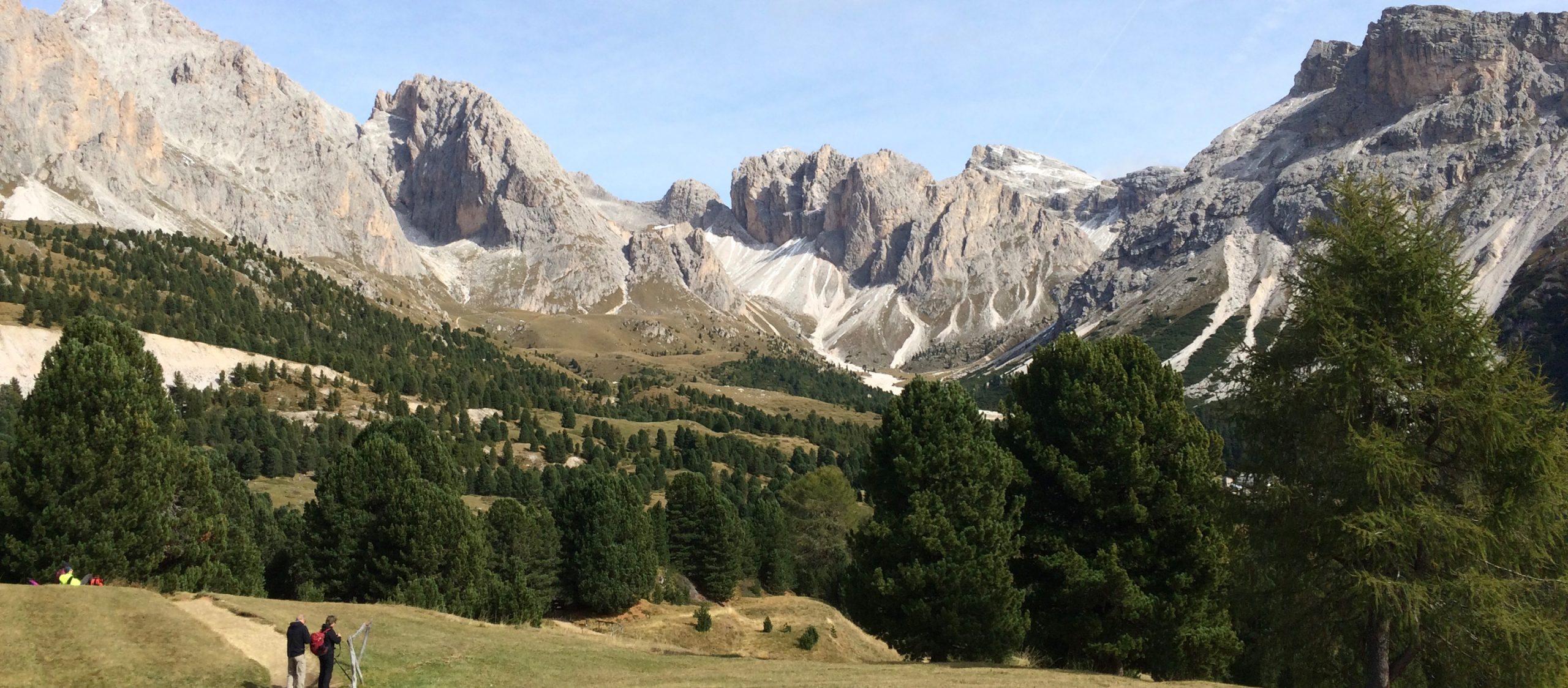 ให้ขุนเขาและป่าสนอิตาลีโอบกอดเราไว้ในหมู่บ้านสีพาสเทลแห่งโอติเซ