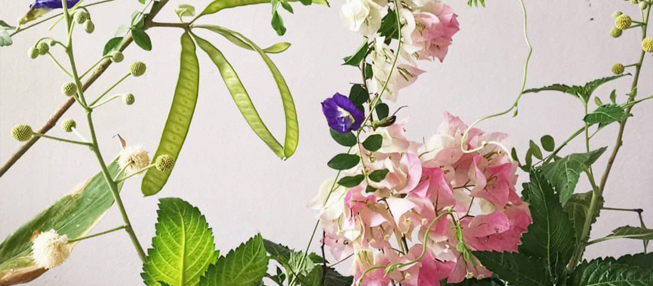 มัทนา สนิทวงศ์ ณ อยุธยา ศิลปินผู้เขียนไดอารีด้วยอิเคะบะนะ ดอกไม้ไทยๆ และดอกใดๆ
