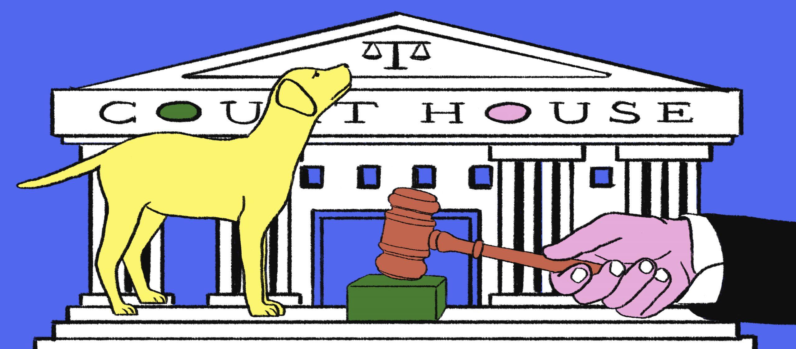 สัตว์ต้องขึ้นศาลไหม เมื่อระบบยุติธรรมในอดีตเคยจัดการศีลธรรมแบบข้ามขอบเขตสายพันธุ์