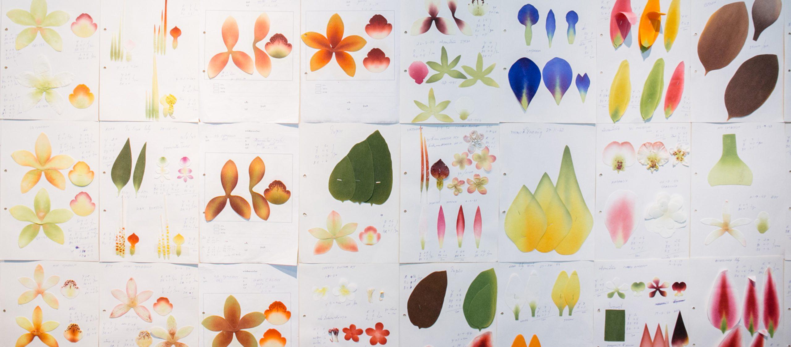 Permaflora แบรนด์ดอกไม้ประดิษฐ์ที่พ่อปลูกให้สมจริงและลูกประดับให้เป็นงานศิลปะ