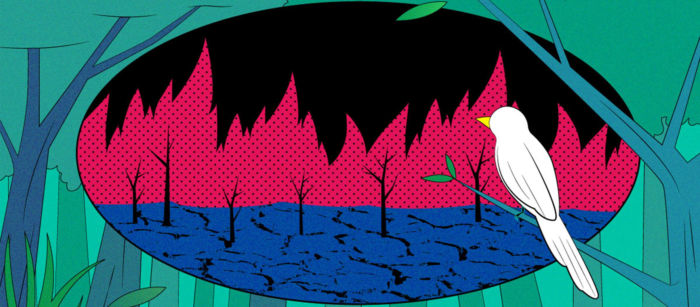 โลกร้อนแล้วไปไหน? 'Solastalgia' ความทุกข์ทนกระวนกระวายใจจากวิกฤตภูมิอากาศ